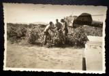 P.076 FOTOGRAFIE RAZBOI LUFTWAFFE WWII AVIATIE BOMBARDIER DORNIER 4U PK 8,7/6cm