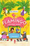 Hotel Flamingo. Caldura mare/Alex Milway