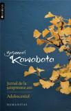 Jurnal de la saisprezece ani. Adolescentul | Yasunari Kawabata