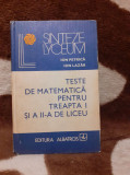 TESTE DE MATEMATICA PENTRU TREAPTA INTAI SI A DOUA-ION PETRICA