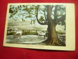 Ilustrata Sighisoara - Vila Franke circulat Sebes-Sibiu 1910
