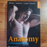 Atlas anatomie fotografic ( ROHEN & Yokochi) editia 8