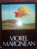Peisajul cu stare de suflet- Viorel Marginean