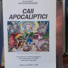 Caii apocaliptici – Nicodim Mandita