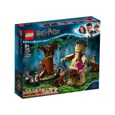 LEGO Harry Potter - Padurea Interzisa: Intalnirea dintre Grawp si Umbridge 75967