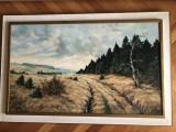 Tablou,pictura belgiana  in ulei pe panza,peisaj, Natura, Altul