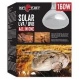 Bec REPTI PLANET Solar UVA & UVB 160W