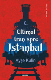 Ultimul tren spre Istanbul/Ayse Kulin