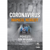 Coronavirus 2020 - Inamicul nevăzut, Corint