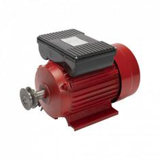 Motor electric 2.5 kw, 3000rpm, TROIAN ROSU,Micul Fermier