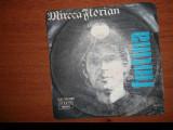 Mircea Florian /Fantana