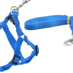 Ham Reglabil si Lesa Detasabila pentru Caini sau Animale de Companie, Culoare Albastru, Lungime Lesa 122cm