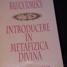 INTRODUCERE IN METAFIZICA DIVINA-RALUCA TOMESCU-188 PG-