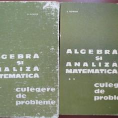 Algebra si analiza matematica-D.Flondor, N.Donciu