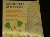SECRETELE MATRICEI-FRANCES-INVESTIGATII SI REMEDII-TRAD. LAURA CRISTIANA-167-PG-, Alta editura