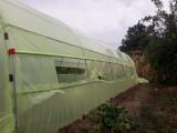 Solar profesional din teava zincata TZ 4/14 m