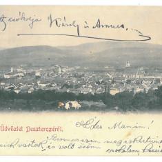 4009 - BISTRITA, Panorama, Litho, Romania - old postcard - used - 1900, Circulata, Printata