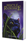 Pisicile Razboinice Vol.15: Exilul