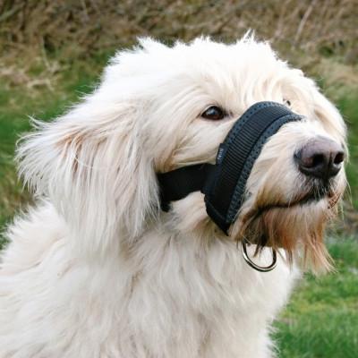 Botniță pentru câini – XXL foto
