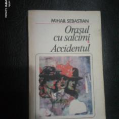 Orasul cu salcami-Accidentul-Mihail Sebastian