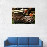 Tablou Canvas, Pasarea Macaleandru in bocanci - 60 x 90 cm