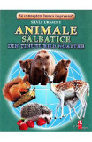 Animale salbatice din tinuturile noastre - Cartonase - Silvia Ursache