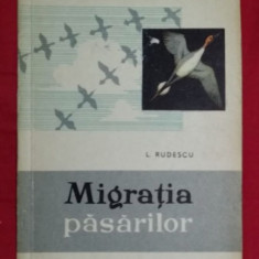 Migratia pasarilor  / L. Rudescu