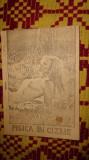 Pisica in cizme 69pagini / carte litografiata