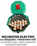 Incubator Electric Clocitoare 60 Oua cu Termometru si Intoarcere Cleo 5