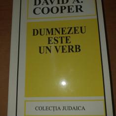 AS - COOPER DAVID A. - DUMNEZEU ESTE UN VERB
