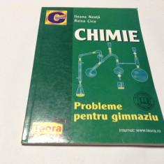 CHIMIE  PROBLEME PENTRI GIMNAZIU  ILEANA NEATA  RF10/0