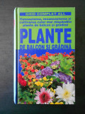 MARIA TERESA DELLA BEFFA - PLANTE DE BALCON SI GRADINA