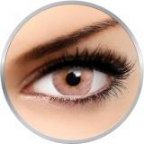 Flash Elixor Sienna Brown - lentile de contact colorate caprui 90 de purtari (2 lentile/cutie)