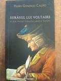 Surasul lui Voltaire si mai multa filosofie pentru bufoni - Pedro Gonzales Calero