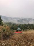 Defrisare, curatare terenuri agricole cu tocatori profesionale