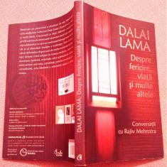 Dalai Lama: Despre fericire, viata si multe altele-Conversatii cu Rajiv Mehrotra