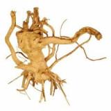 Cuckoo Root rădăcină pentru acvariu - 19 x 13 x 20 cm
