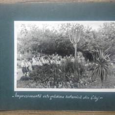 Pionieri in vizita la Gradina Botanica din Cluj// fotografie