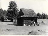 Fotografie cabana de munte din lemn poza veche