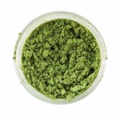 Pulbere iridiscenta sclipici Snazaroo GREEN 12ml