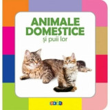 Animale domestice si puii lor/***
