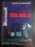 Visual Basic 3.0 - Lucian Vasiu ,543040