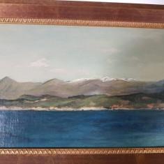Tablou Elvețian, Peisaje, Ulei, Altul
