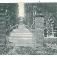 4577 - ORSOVA, Public Garden, Romania - old postcard - used - 1904, Circulata, Printata
