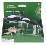 Set 2 figurine Balena si Broasca Testoasa National Geographic, 3 ani+