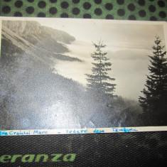 cp piatra craiului vedere de pe tamaselu album 107