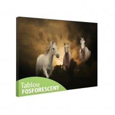 Tablou fosforescent Trei cai albi