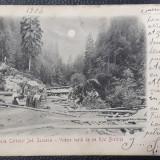 Carte poștală Gura Colbului  (zona Vatra Dornei) / Suceava - 1906, Circulata, Printata, Stanca