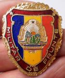 I.493 ROMANIA RSR INSIGNA MILITARA MILITAR DE FRUNTE h35mm email VARIANTA MICA