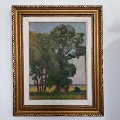 OTTO BRIESE-PICTOR IESEAN-PÂLC DE COPACI-ULEI/CARTON-1944